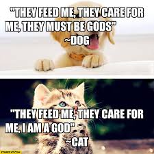 Feed Me Meme - they feed me they care for me they must be gods dog i am a god