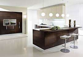 fascinating ideas kitchen cabinet accessories images appealing