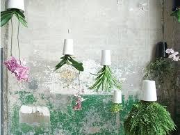 boskke hanging upside down modern planters