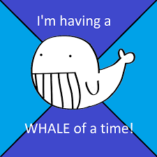 Whale Meme - whale meme with exle words since words are hard by