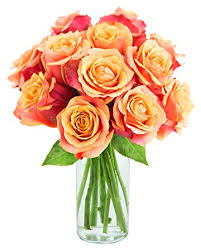 Bouquet Of Flowers In Vase Amazon Com Kabloom Bouquet Of 12 Fresh Cut Orange Roses Long