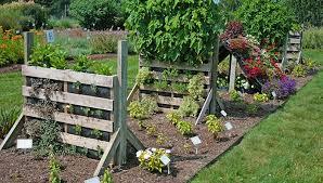 northeast gardening diy pallet gardens
