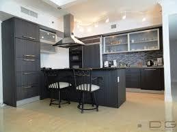 modern gray kitchen dng