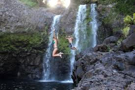 big island private and custom tours from kona and hilo wasabi