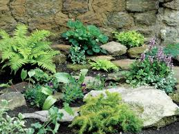 Simple Rock Garden Make A Shady Rock Garden Hgtv