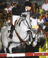 Summer, Rider/Trainer: Mandy Porter. 2006 Pacific Coast Grand Prix Horse of the Year, Owner: Wild Turkey Farm - summer