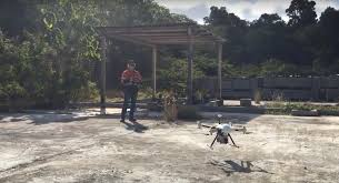 drones set to target christmas island u0027s feral cats lovesick