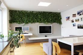 Plants Home Decor - Home decoration plants