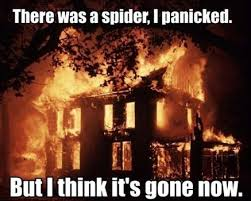Kill Spider Meme - man torches home trying to kill a spider with a lighter and spray