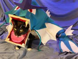 halloween hamster costume 25 cosplaying pets who are so ready for halloween 2015 dorkly post