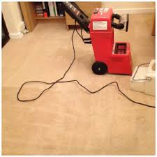 Rug Doctor Carpet Cleaning Machine Rug Doctor Before And After Google Search Rug Doctor Carpet
