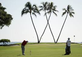 180117105722 sony open pga tour hawaii palm trees jpg
