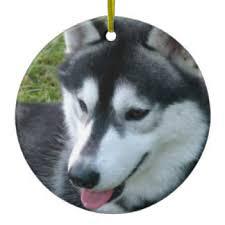 siberian husky puppies ornaments keepsake ornaments zazzle