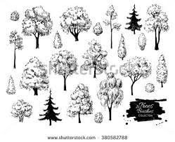 collection sketch ink trees stock vector 320034089 shutterstock