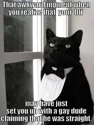 Awkward Cat Meme - 1 cat memes quickmeme