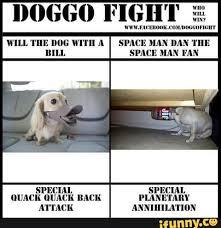 Fight Meme - doge doggo fite fight memes cute doggo