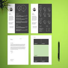 Resume Template Free Free Infographic Resume Template Free Design Resources
