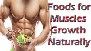 gain muscle mass top 10 foods to gain muscle mass best foods