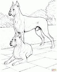 download coloring pages dog coloring pages cute dog coloring