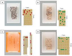 microarrays free full text re punching tissue microarrays is