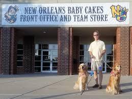 new orleans baby cakes thek9harperlee