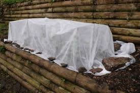 How To Protect Outdoor Wood Furniture by Cold Weather Plant Protection Tips For Protecting Plants In Winter
