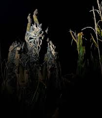 10 best insanity point images on haunted houses scary