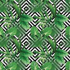 vinyl wallpaper with palm leaves texture seamless 20925