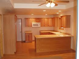 pot lights in kitchen u shaped cherry wood pantry cabinet under ceiling fan and recessed