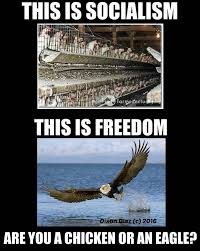 Freedom Meme - socialism vs freedom brilliantly summed up with one meme