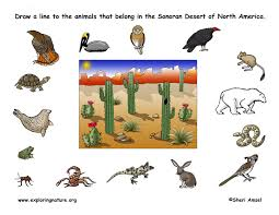 desert clipart adaptation pencil and in color desert clipart