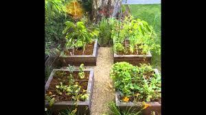 exotic raised bed vegetable garden designs youtube