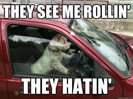They See Me Rollin They Hatin Meme - they see me rollin they hatin blatantly pompous dog quickmeme