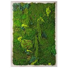 preserved moss living wall garden by aha dwell
