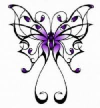 beautiful butterfly and designs
