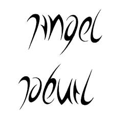 collection of 25 white black ambigram design