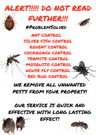 Offer For Shops by Pest Control Contract Offer For Offices Home Owners Restaurants
