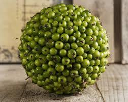 green 5 5in