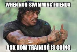 Competitive Swimming Memes - 30 swimming memes that perfectly describe swimmers memes swimming