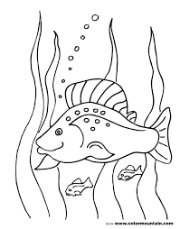 tropical fish coloring pages