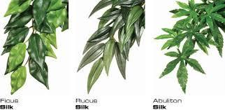 silk plants exo terra hanging silk plant ficus large