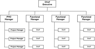 functional managers managing the managers scrum shortcuts without cutting corners