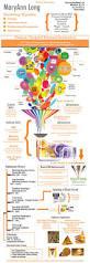 Best Resume Builder Online by Online Curriculum Vitae Creator Online Creative Resume Builder Tk