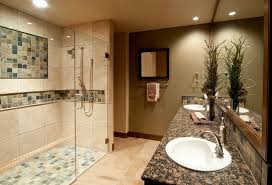 Bathroom With Shower Only Square White Porcelain Sink Mounted Master Bathroom Shower Only