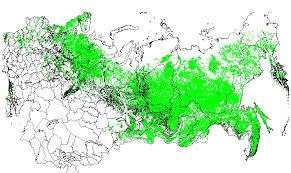 former soviet union map ornl daac rlc generalized forest map of the former soviet union 1 km