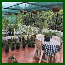 terrace gardening mdg terrace garden package 2