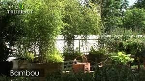 decoration petit jardin beautiful petit salon de jardin en bambou photos amazing house