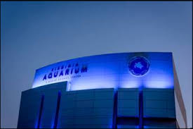 autism speaks light it up blue local national landmarks light it up blue in honor of autism