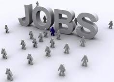 resume sles for engineering students fresherslive recruitment freshers live fresherslive on pinterest