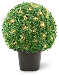 22 mini boxwood shaped potted topiary tree with 70 clear